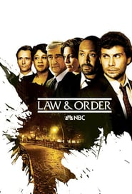 New York : Police Judiciaire Saison 13 Streaming