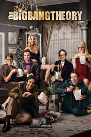 The Big Bang Theory Saison 8 Streaming