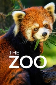 The Zoo Saison 4 Streaming
