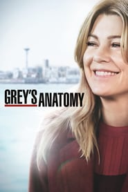 Grey's Anatomy Saison 17 Streaming